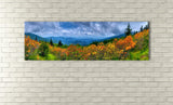 Roan Mountain, Ready-to-Hang Photographic Print On Canvas