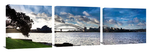 Sydney Harbour bridge and Opera House, viewed from Mrs Macquaries Chair.