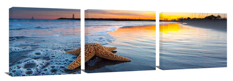 Walton_Beach_Starfish