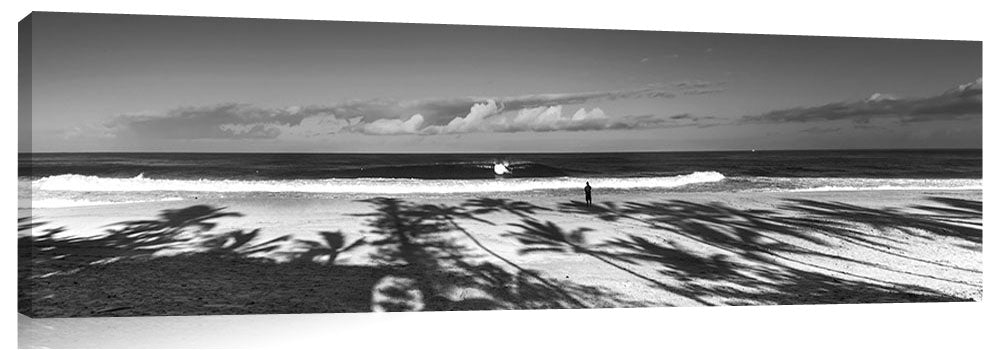 Palm_Surf_bw
