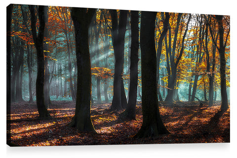LIGHT AND SHADOWS, Ready-to-Hang Photographic Print On Canvas