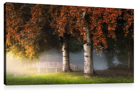 TWINS, Ready-to-Hang Photographic Print On Canvas