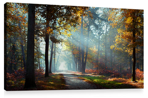 HIDDEN TREASURES, Ready-to-Hang Photographic Print On Canvas