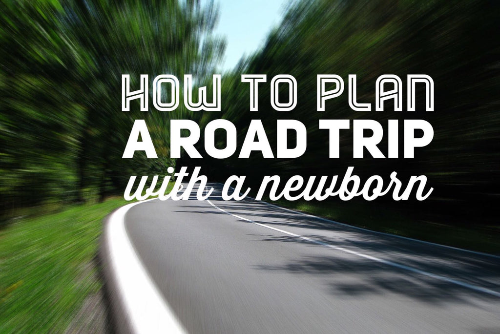 How To Plan A Road Trip With A Newborn