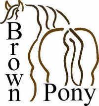 The Brown Pony