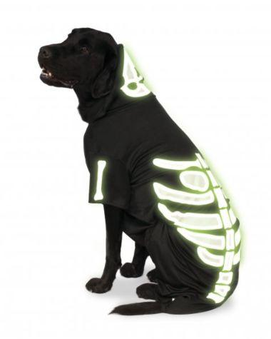 Glow-In-The-Dark Skeleton Pet Hoodie-Pet Costume-1-Classic Horror Shop