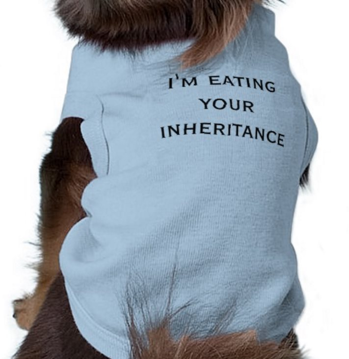 I'm eating your inheritance dog sweater
