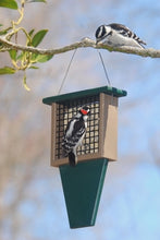 Recycled Plastic Suet Bird Feeder with Tail Prop