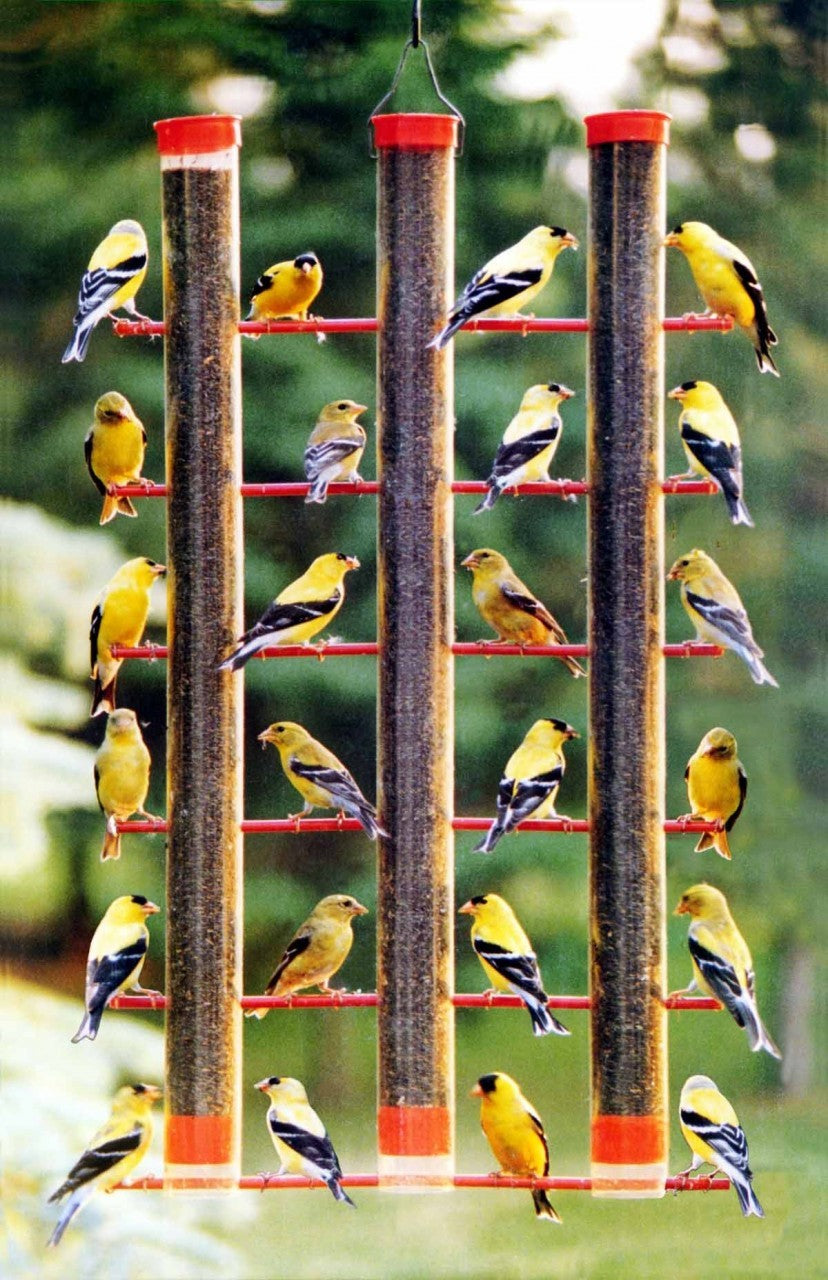 Finches Favorite 3 Tube Bird Feeder
