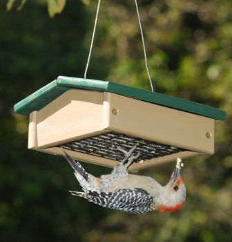 Recycled Plastic Upside Down Suet Bird Feeder