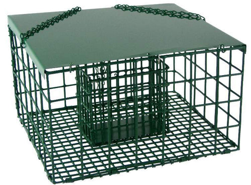 Squirrel Resistant Suet Palace Bird Feeder