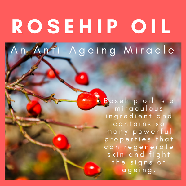 Rosehip Oil: An Anti-Ageing Miracle