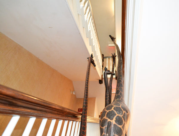 Giraffes on Display at Harbor View Hotel, Martha's Vineyard