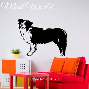 Border Collie Wall Art Stickers