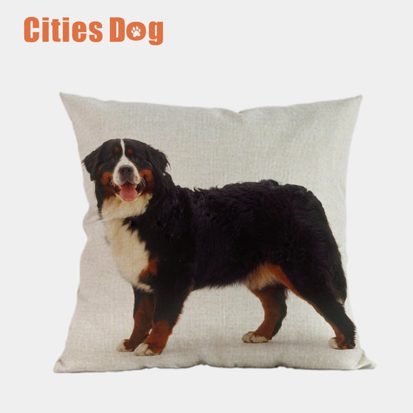Bernese  Pillow case