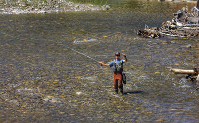 5 Must Have Dry Flies in Canada