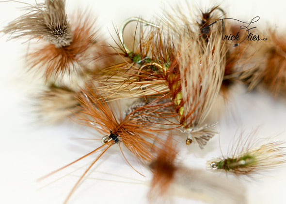 Caddis 19 Fly Collection - Trickflies