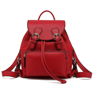 Chic Casual Fashion Handbag, Backpack H2061