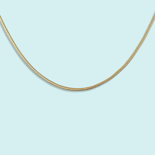 Gold Snake Chain Necklace