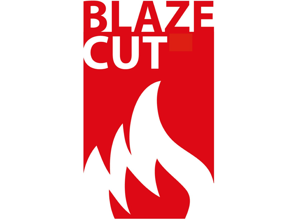 BlazeCut T200E Fire Suppression System (2M)