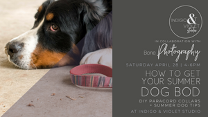 Summer Dog Bods | DIY Collar Workshop - April 28