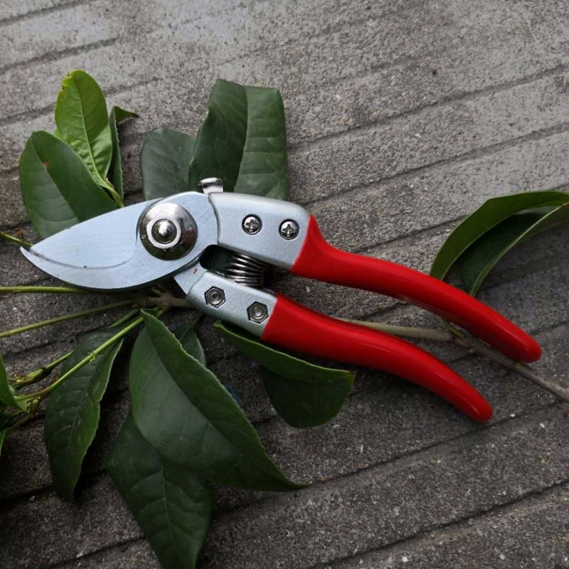 High hardness Professional Garden scissors flower twig clipers Bent Handle high manganese steel blades