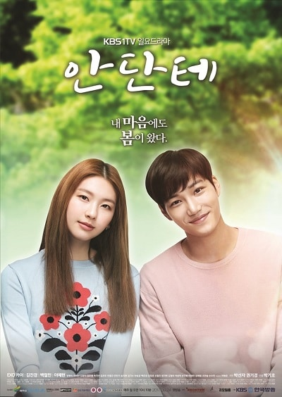 Korean drama dvd: Andante, english subtitle