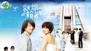 TAIWAN DRAMA DVD: Down with Love, chinese subtitle