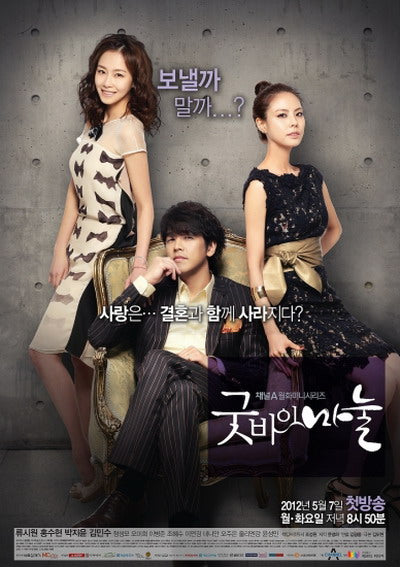 Korean drama dvd: Goodby Dear Wife, english subtitle