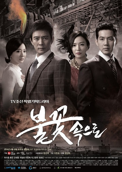 Korean drama dvd: Into the flames, english subtitle