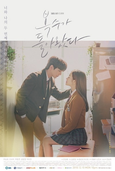 Korean drama dvd: My Strange hero, english subtitle