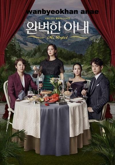 Korean drama dvd: Perfect wife, english subtitle