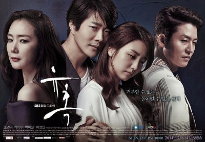 Korean drama dvd: Temptation, english subtitle