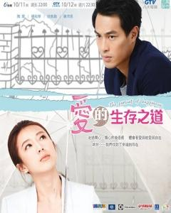 Taiwan drama dvd: The pursuit of happiness, english subtitle