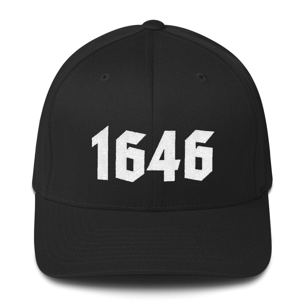 1646 Flextfit v2 - Hat - The Reformed Sage - reformed - reformed gifts - christian gifts - christian hoodie - christian apparel - christian decor - christian art -