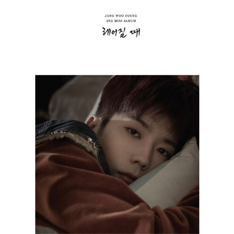 JANG WOO YOUNG (2PM) 2ND MINI ALBUM 'WHEN YOU BREAK UP'