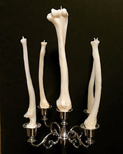 Zombolina's Hand Poured Human Bone Dinner Candles. Available in Humerus, Ulna and Radius. Zombolina.com