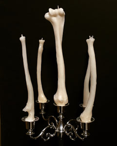 Hand Poured Human Radius Bone Candle