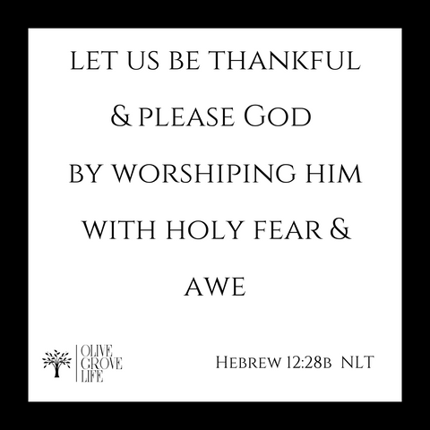 Let us be thankful. Let us please God and worship Him with Holy fear and awe. Hebrews 12:28 NLT