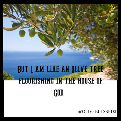 But I am like an olive tree flourishing in the house of God Psalm 52:8 NIV