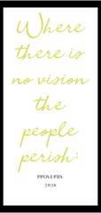 Where there is no vision the people perish...