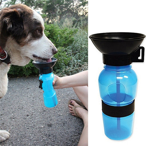 Healthy Dog Water Bottle