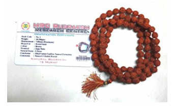 Divya Shakti 100% Original Panch Mukhi Rudraksh Mala in 108+1 beads (8 MM) With Lab Certificate ( Rudraksha mala )