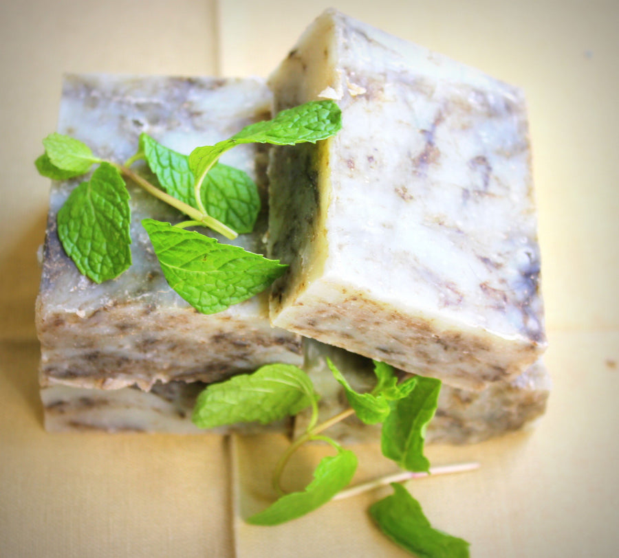 Mint Freshness Bathing Soap - 100 g
