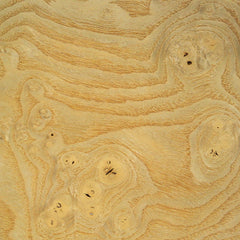 Ash Burl veneer sample