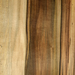 Blackheart Sassafras veneer sample
