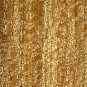 Spotted Gum veneer sample