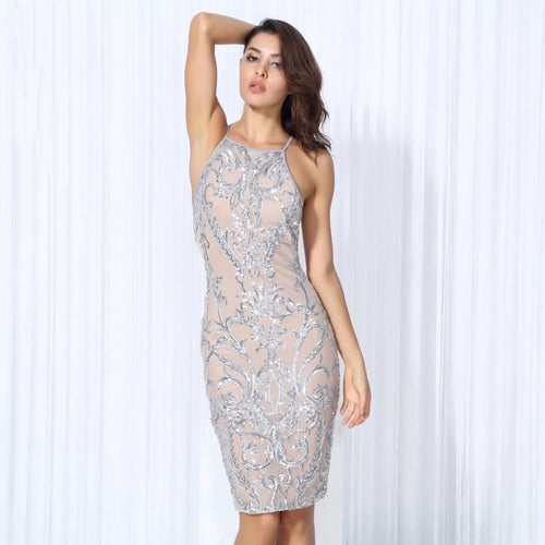 High Life Embroidered Silver & Nude Party Dress - Fashion Genie Boutique USA Alt