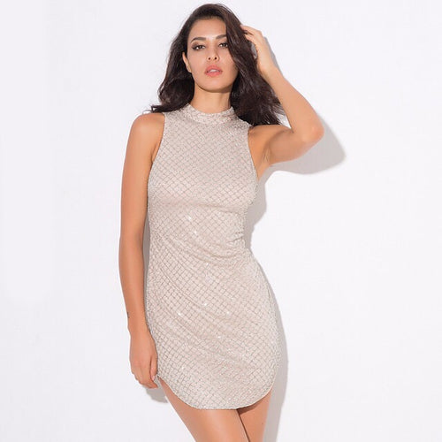 Simplicity Silver Glitter Embellished Mini Dress - Fashion Genie Boutique USA Alt
