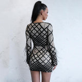 Meagan Black Feather Long Sleeve Mini Dress - Fashion Genie Boutique